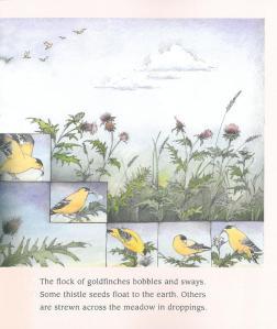 Wild Garden page