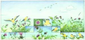 Wild Garden spread